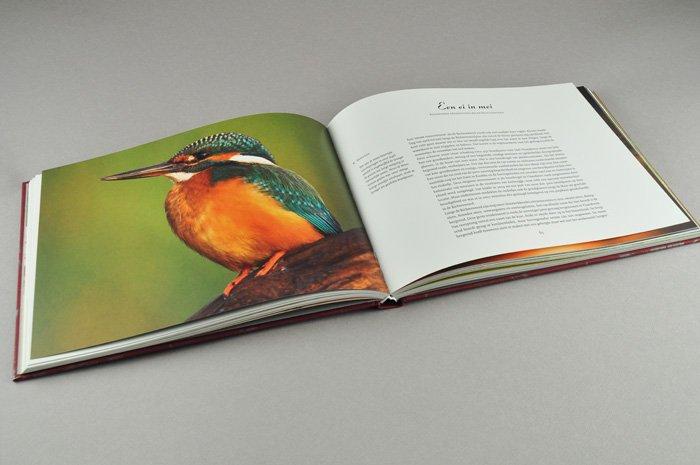 grafisch ontwerp boek Like a Rolling Stone